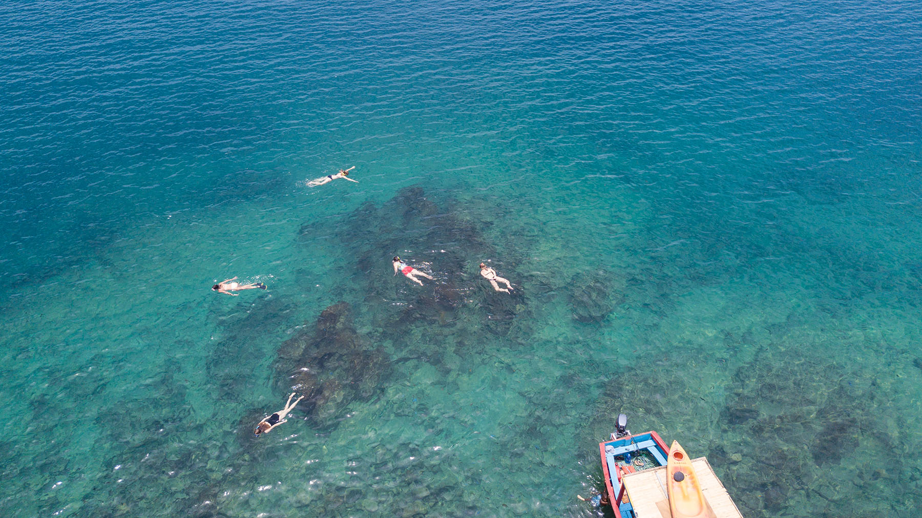 Thumbi View guests snorkelling at Thumbi Island